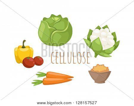 Vegetables food cellulose vector set.