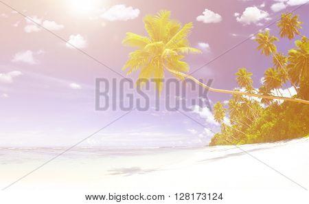 Beach Nature Summer Journey Concept
