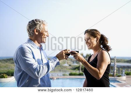 Caucasian mid-adult couple making toast with wine glasses.