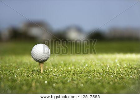 Bola de golfe e tee de golfe.