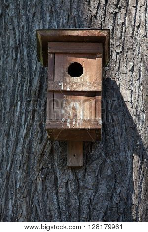 Nest box on a tree.