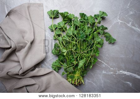 Fresh herbs from garden , on a gray concrete background