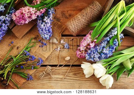 Hyacinth on wooden background, closeup