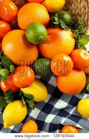 Set of different citrus fruit on tablecloth