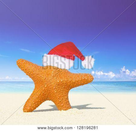 Wonderful Christmas Beach Concept