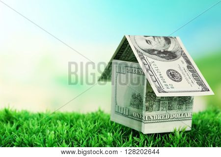 Money house on green grass, close up