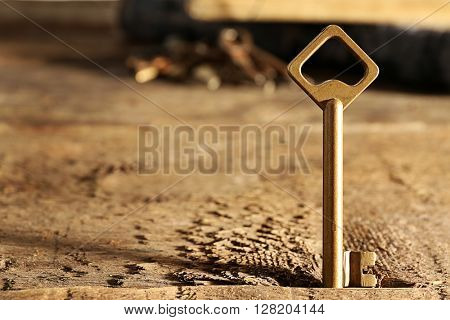 Golden key on rustic wooden background