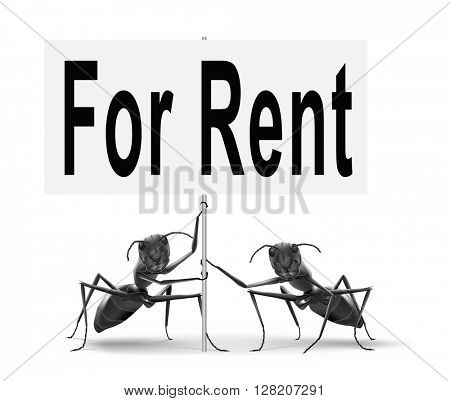 For rent sign, renting a house apartment or other real estate to let label. Home flat or room to let