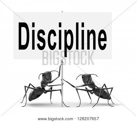 discipline and self motivation road sign billboard.