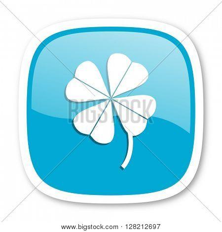 four-leaf clover blue glossy icon