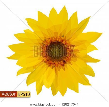 Vector low poly yellow flower sunflower