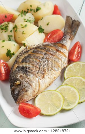 Grilled gilt-head bream fish with boiled potato