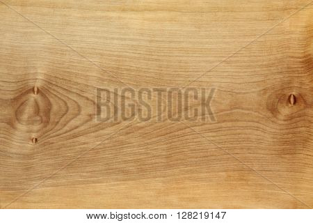 Sycamore wood grain forming an abstract background with copy space.