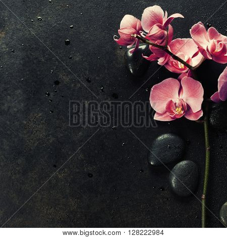 Spa stones and pink orchid on the dark vintage background