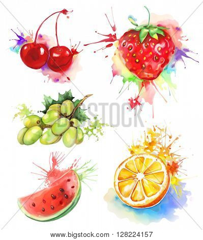 Watercolor painting, fruits and berries, vector illustration isolated on a white background