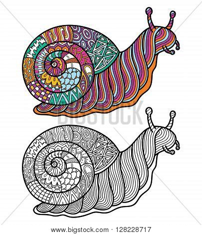 Cute zentangle ornate snail. Vector illustration of cute ornate zentangle snail for children or for adult anti stress coloring book