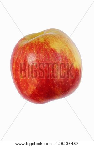 Jonagold apple (Malus domestica Jonagold). Hybrid between Golden delicious and the Jonathan apples. Image of single apple isolated on white background