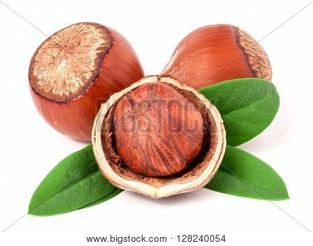 Three hazelnuts with leaves isolated on white background close-up macro.