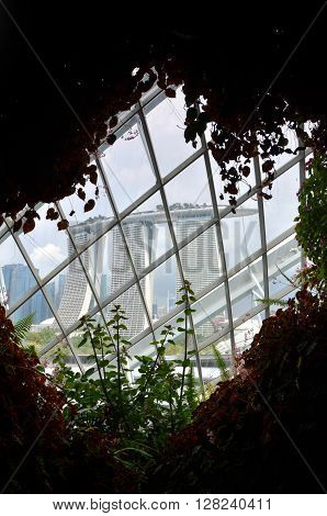 View Of Marina Bay Sands From Cloud Forest At Gardens By The Bay, Singapore