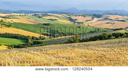 Country landscape in Marches (Italy) at summer ** Note: Visible grain at 100%, best at smaller sizes
