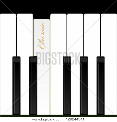 Top view piano keys. Musical instrument. Vector illustration. Background.