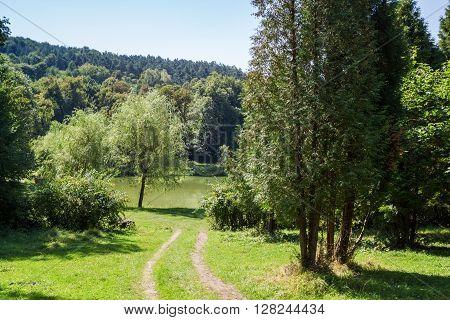 Berezhany Rai Park. The trail to the lake.