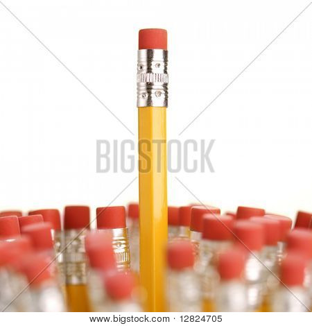 Group of eraser ends of pencils with one standing out higher than the rest.