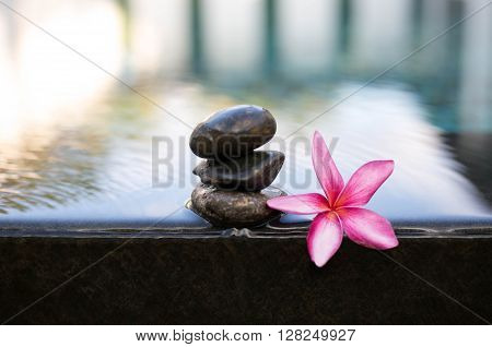 Pink Frangipani flowers and wet black stones in Spa concept