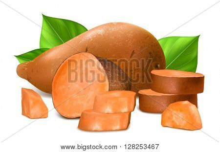 Sweet potatoes. Fully editable handmade mesh. Vector illustration.