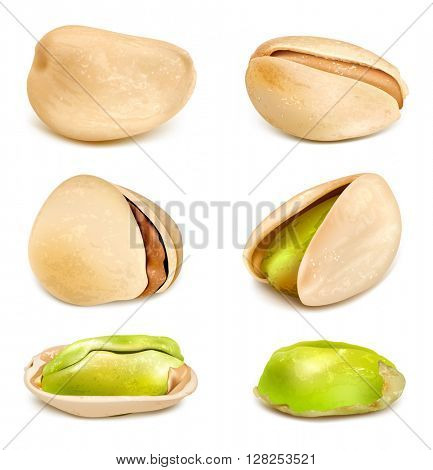 Pistachio nuts and pistachio kernels. Fully editable handmade mesh. Vector illustration.