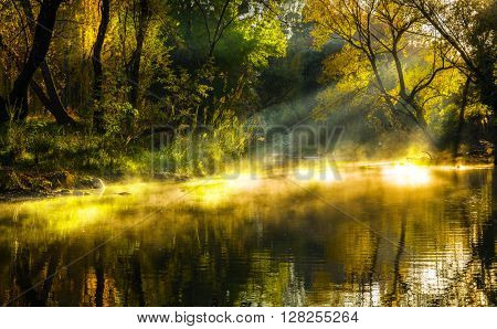 Autumn lake mist