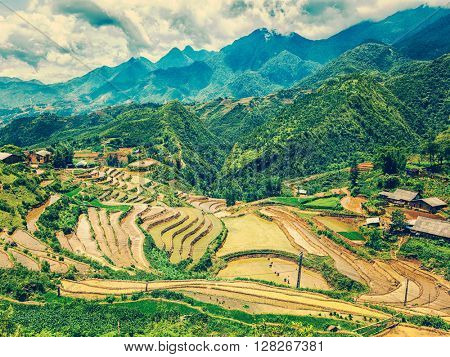 Vintage retro effect filtered hipster style image of rice field terraces (rice paddy fields). Near Cat Cat village - popular tourist trekking destination. Near Sapa, Vietnam