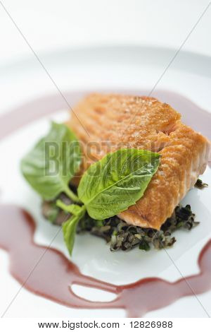 Still life of gourmet salmon meal with professional presentation.
