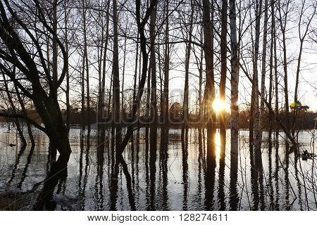 High Water In River In A Spring Day