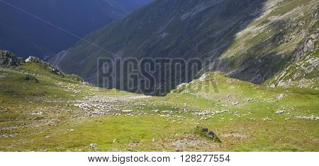 Beautiful mountain landscape in the summer