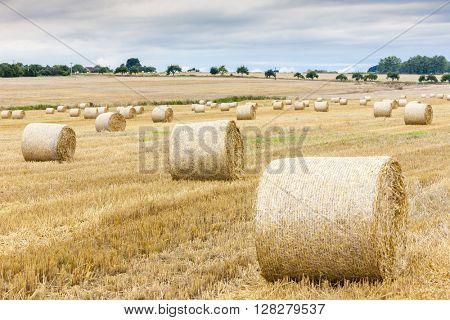 straw bales on the field, Czech Republic