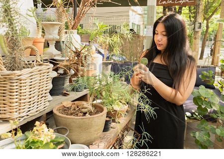 Woman in black dress standing in cactus garden fun of trees and flowers an day time with happy face looking down on her cactus/Woman in cactus garden
