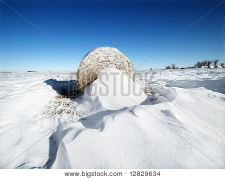 Hay bale in snow covered field with a blue sky in the background.