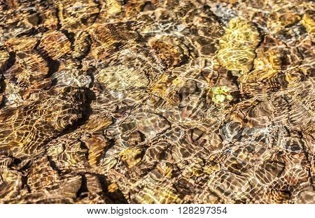 Translucent water waves over brown pebbles with little green plant. Background