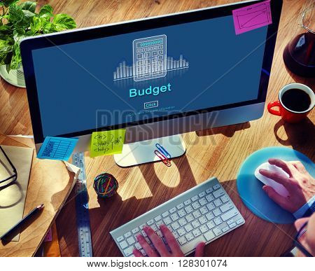 Budget Investment Revenue Financial Economy Concept