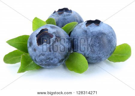 Blueberry Blueberries Berry Berries Fruit Isolated On White