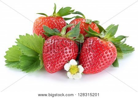 Strawberry Strawberries Berry Berries Fruit With Blossom Isolated On White