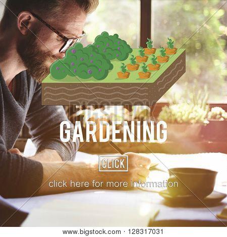 Gardening Botany Flower Growth Spring Summer Concept