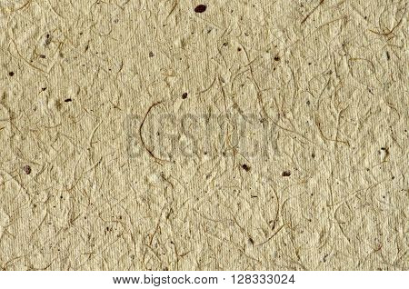 Beige background - texture of decorative colored paper