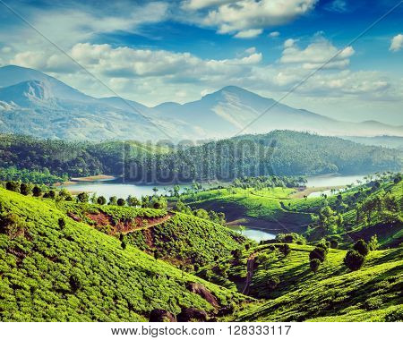 Vintage retro effect filtered hipster style image of tea plantations and Muthirappuzhayar River in hills near Munnar, Kerala, India