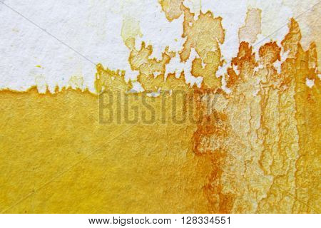 Yellow Watercolour Background 8