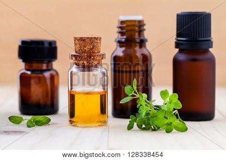 Fresh  Lemon Thyme  Leaves  And Essential Oil With Shallow Depth Of Field Setup On Wooden Background