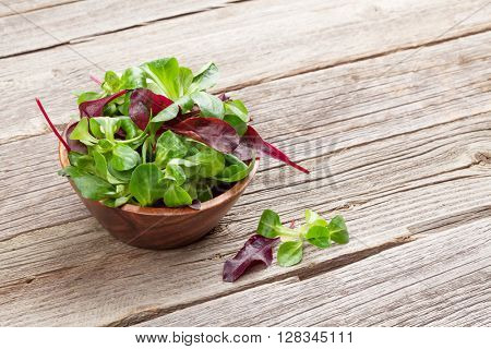 Corn salad leaves in bowl on wooden table. Valerianella locusta. View with copy space