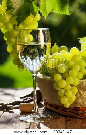 White wine glass, vine and bunch of grapes on garden table