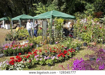 Portici (Naples) Italy. April 30 2016: Flowering plants seller stand during the annual fair in the Botanical garden